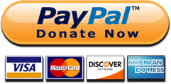 PayPal Donate Now icon